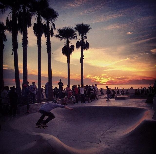 Famous Venice Skate Park