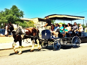 History tours on board a horse and carriage