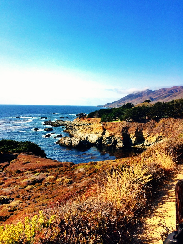 My last Big Sur picture....until next time!!!