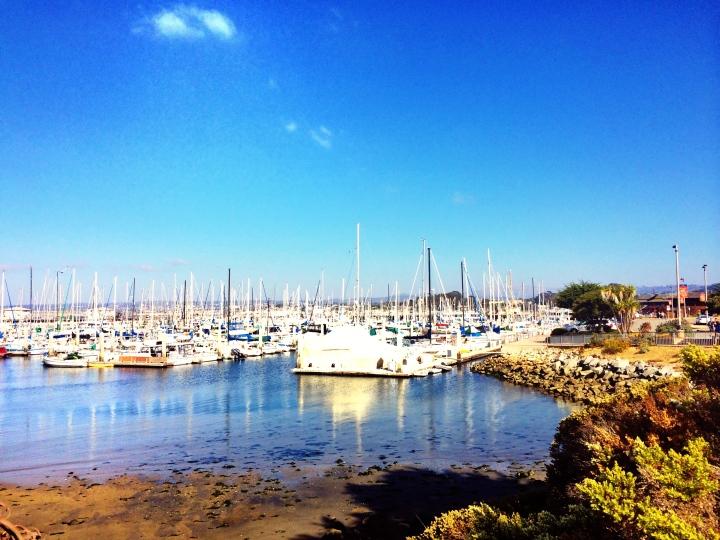 The Marina at Fisherman's warf